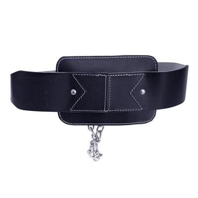 Dip Belt
